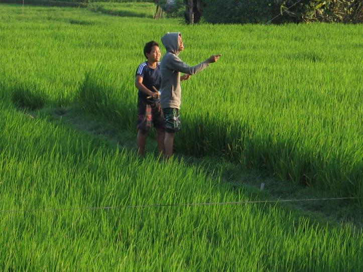 2 boys-kite_9024