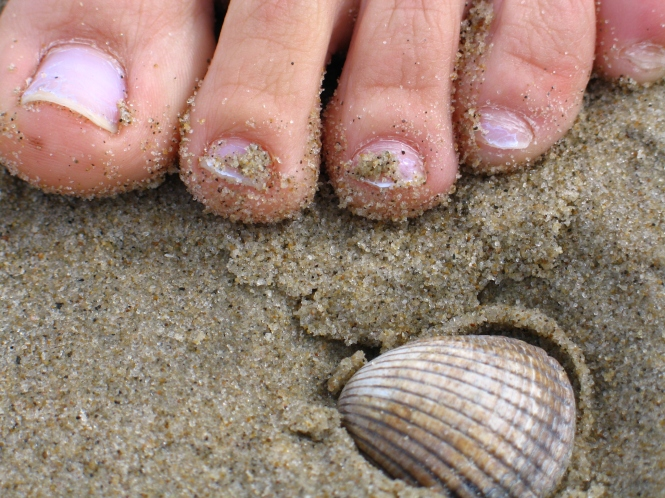Tina's toes on the island of ancestors