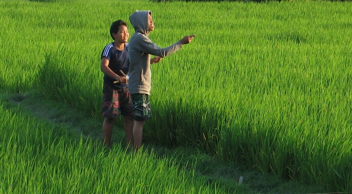 2 boys-kite_9024 E1