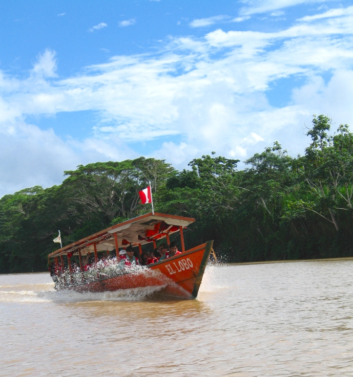Amazon jungle river boat