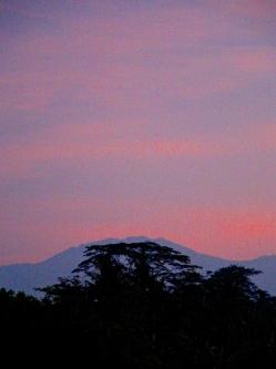 10 Volcano E1SM 3908 E1 2