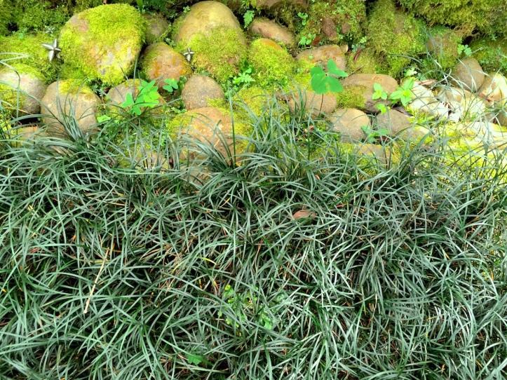 10 Rock-Grass1296 E1SM