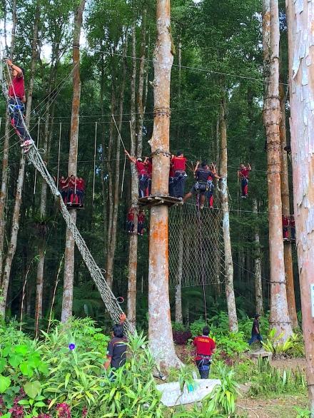 2 TreeTopAll 1294 E1SM