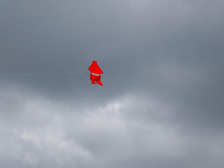 11 KiteRed 4315sm