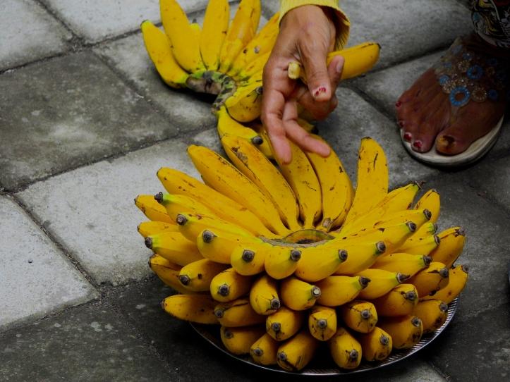 4d BananaBowl 4462 Esm