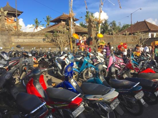 15 Bikes-Temple 1349 ESM