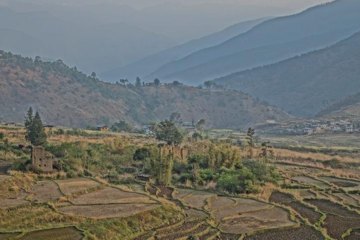12 Landscape 1 9917