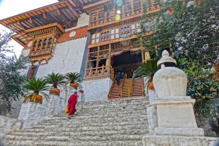 18 Dzong Steps 9743