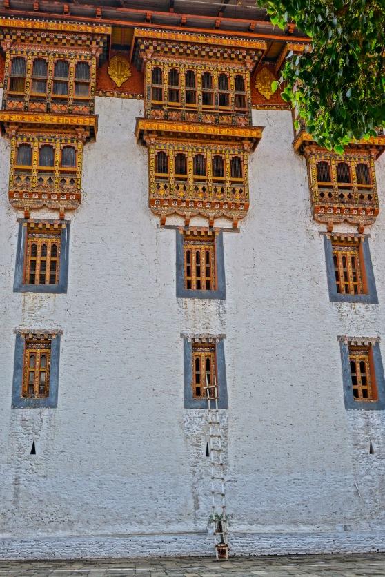 19 Dzong Ladder 9749