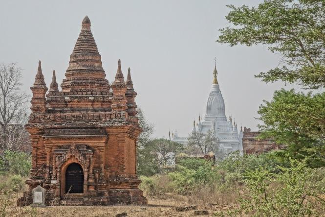 2 Bagan 2+White 9088