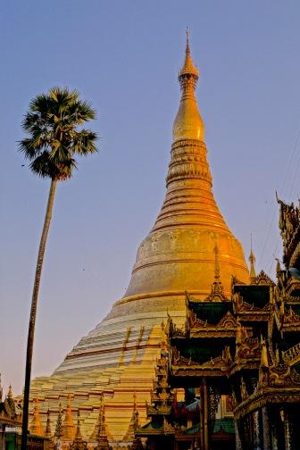 14 Pagoda 7518