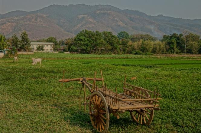 4 Cart Mtn 7834