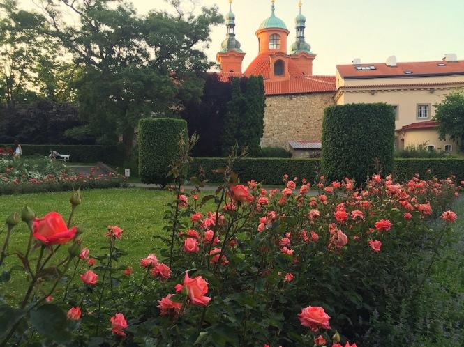 Petrin Hill rose garden