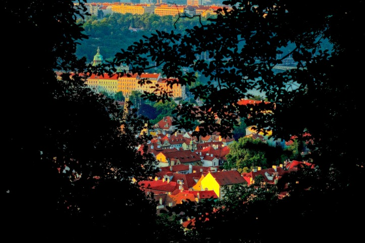 Petrin Hill view of Prague - night with trees
