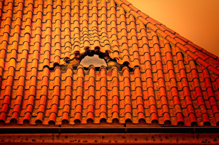 tile roof in Prague