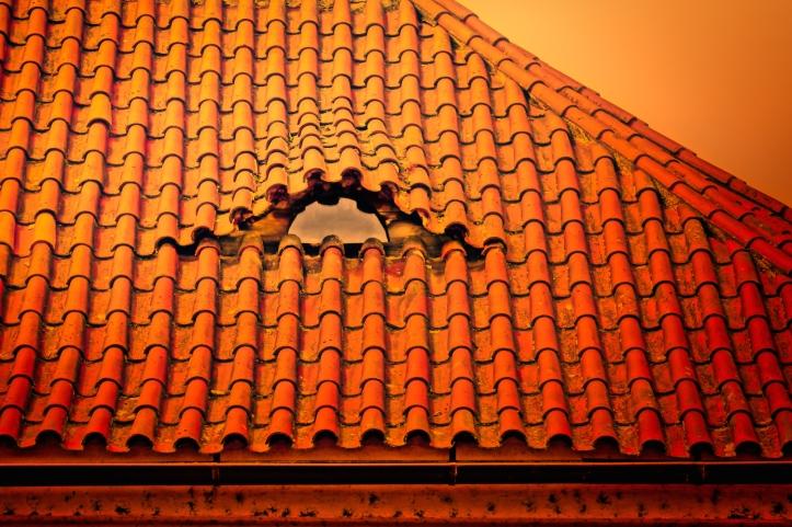 tile roof in Prague