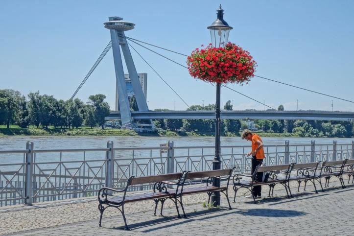 UFO Bridge in Bratislava with flowers