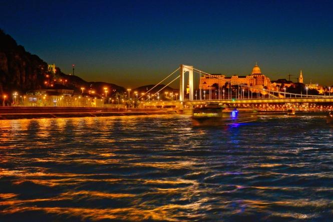Elizabeth Bridge Budapest night