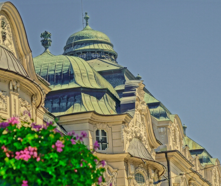 Bratislava, roof top, flowers
