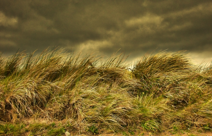 Ireland grass autumn storm colors